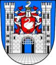 Město Bor